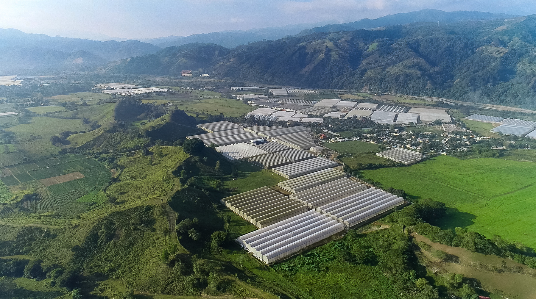 One of the most advanced, modern and profitable Greenhouses Farm at Rancho Arriba