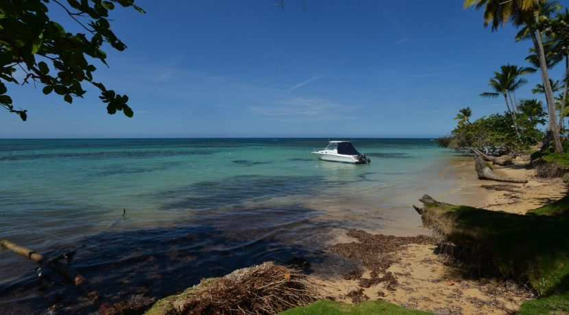 las terrenas, portillo, samana, beachfront, lot, island living, land to develop, oceanfront, palm trees