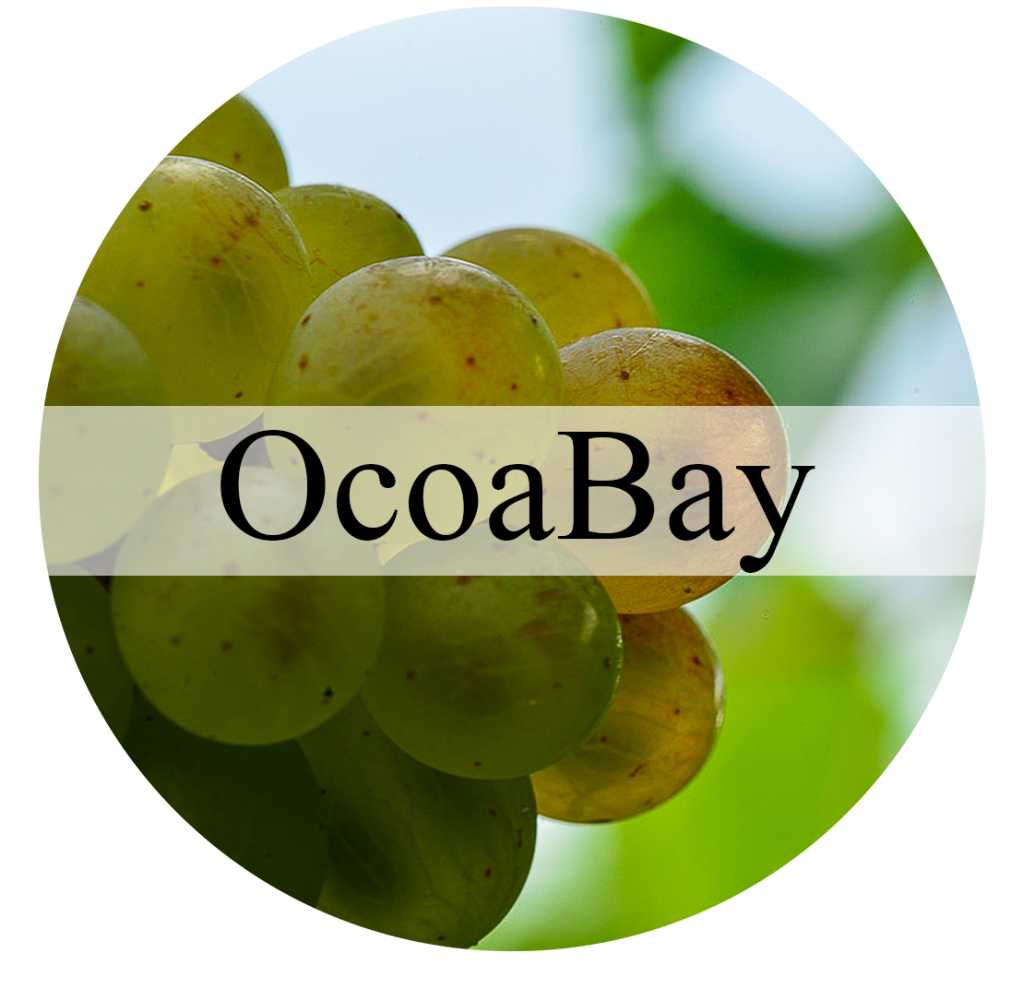 ocoabay button