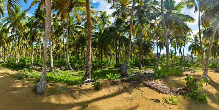 Coson, Luxury Real Estate for sale, Land for sale, Samana