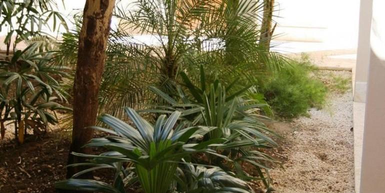Arrecife 33 Interior Garden