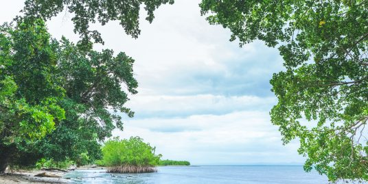 95 acres Beachfront at Samana Bay
