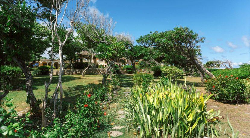 Villa Castellamonte - Auction - Orchid Bay- 00038