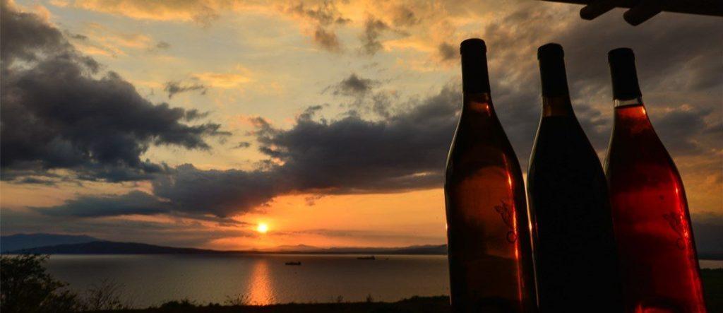 ocoabay cominidad del vino banner