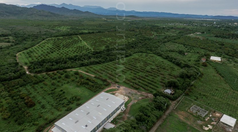 Mangos de Matanzas, Bani, Dominican Republic