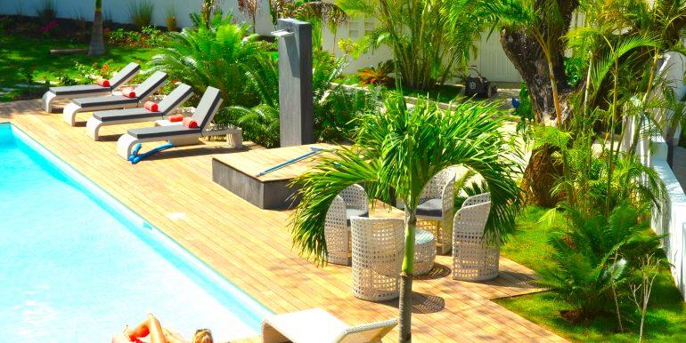 Casa-22_tropical garden