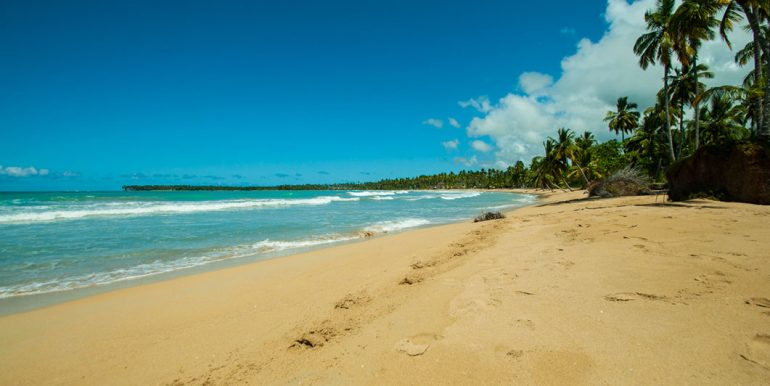Beachfront Investor's Villa Tabiki18