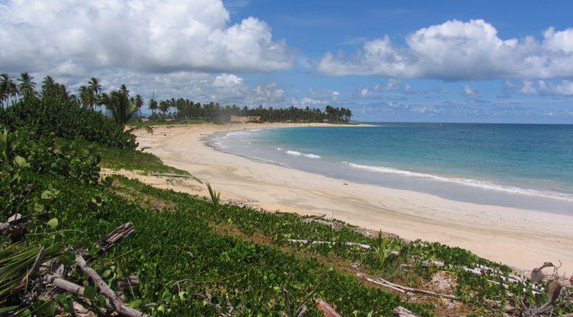 playa UA 1