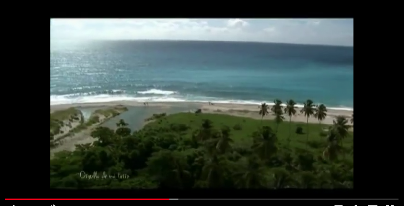 Beachfront Land For Sale at El Quemaito, Barahona
