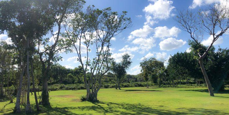 Hacienda A11-Puntacana-Luxuryrealestate00016