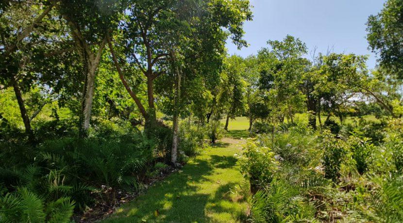 Hacienda 95 - Punta Cana Resort - Luxury real estate for sale 00007
