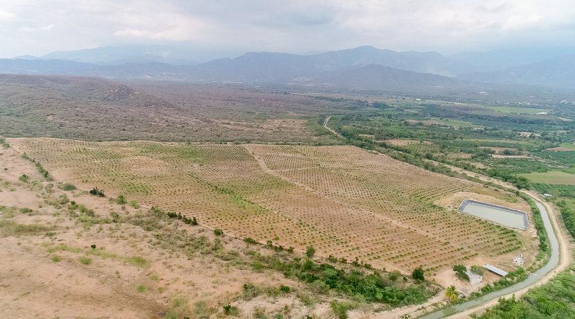 Fincas DR - Cano Piedra00004