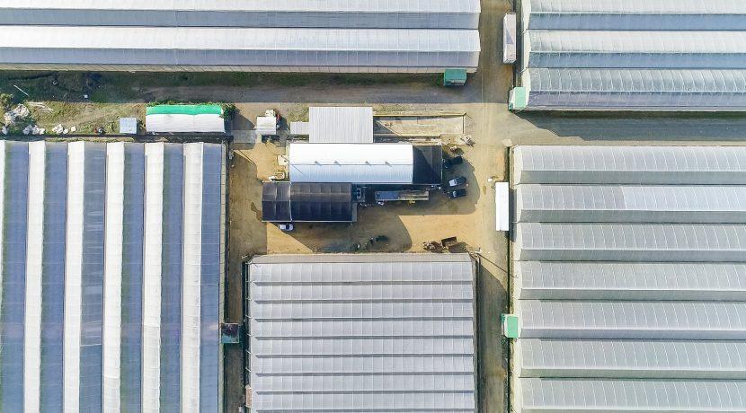 Fincas DR - Rancho Arriba - Greenhouses00011