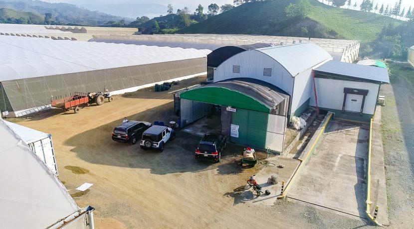 Fincas DR - Rancho Arriba - Greenhouses00013