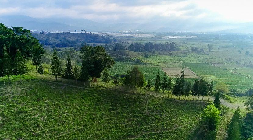 Fincas DR - Rancho Arriba - Greenhouses00019