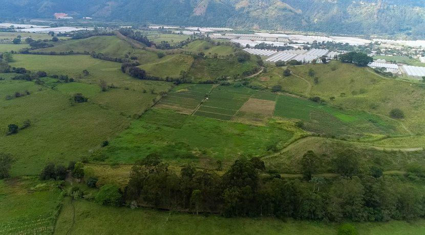 Fincas DR - Rancho Arriba - Greenhouses00021